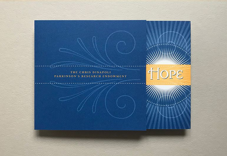 2kDesign_Collateral_AlbanyMed_RayofHope_3_770x530.jpg